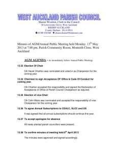 thumbnail of MinutesAP_2013-05-13