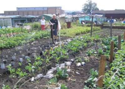 allotments - Copy
