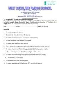 thumbnail of Agenda110219