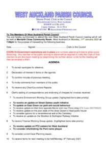 thumbnail of agenda110121