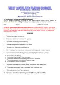 thumbnail of agenda080321